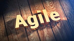 Agile_Image_300px.jpg
